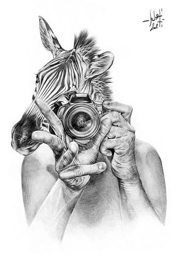 Zebra_fotos_pencil