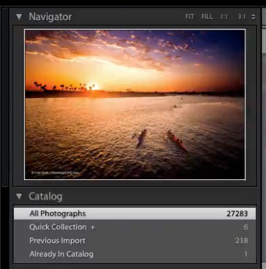 organize adobe lightroom library 01