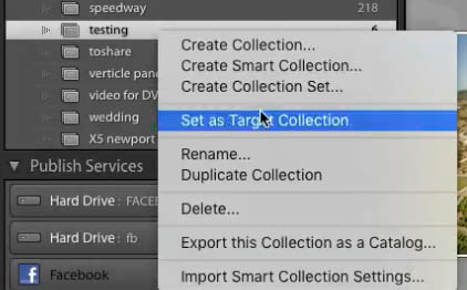 organize adobe lightroom library 10
