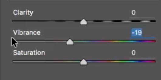 vibrance slider in Camera Raw