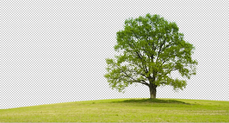 how to cut out anything in photoshop 3 best ways to remove