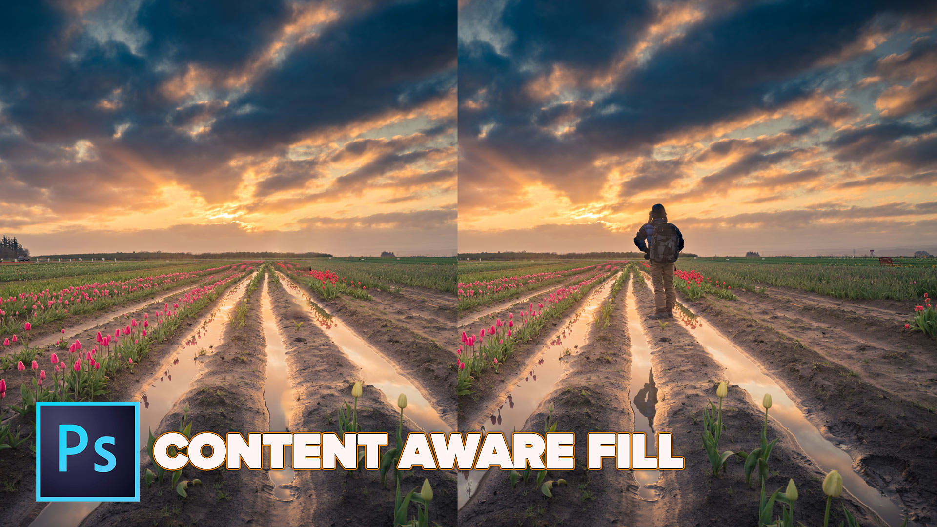 Solved: Content Aware Fill not available in Photoshop CS4 ...