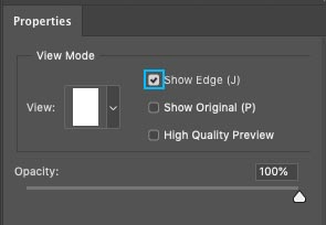 show edges in refine edge