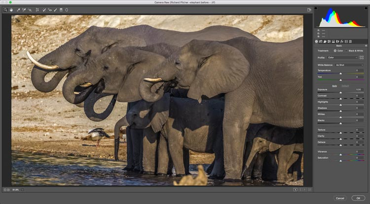 How to Remove Shadows from a Photo in Photoshop - PhotoshopCAFE
