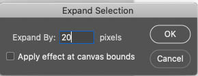 expand selection in Photoshop