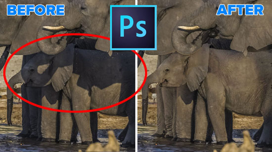 how to remove shadows in photohop , photography tutorials in photoshop