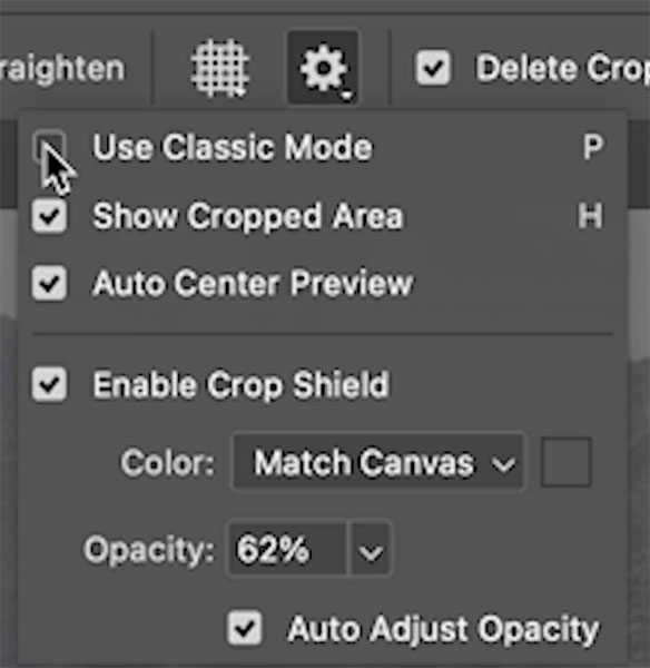 crop tool options
