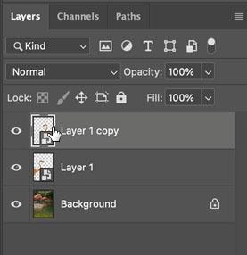 copy a layer
