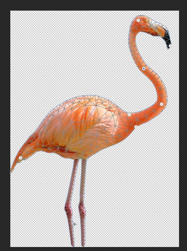 apply puppet warp to a bird in Photoshop