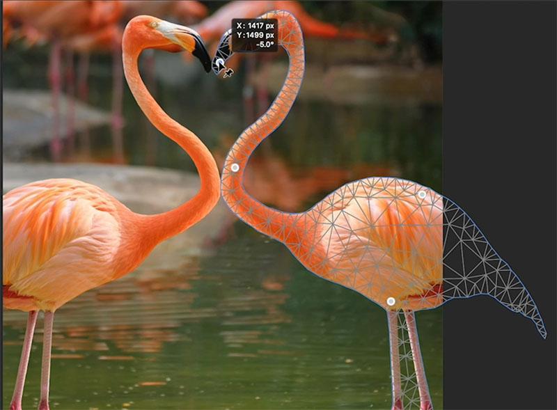 puppet warp mesh in photoshop